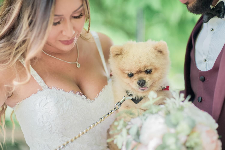 mariage-champetre-domaine-de-la-beauvoisiere-61